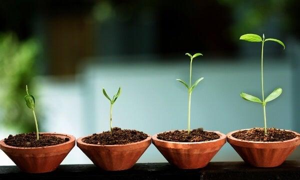 정서적 성장의 8가지 신호