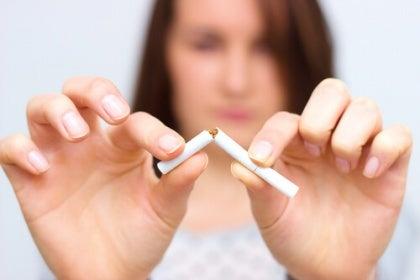 담배는 무엇을 내뿜는가?