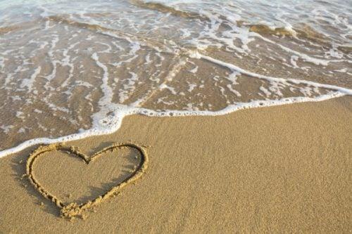 열정적인 삶을 사는 방법에 대해 알고 있는가?