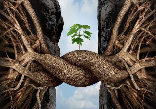 일곱 개의 통나무: 삶에서 우리가 마주하는 일반적인 도전들