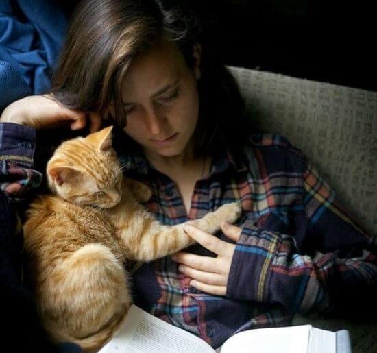 고양이와 함께 보내는 시간은 낭비가 아니다