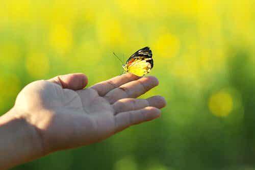 4주 만에 인생 바꾸기: 새로운 인생을 살 준비가 되었는가?