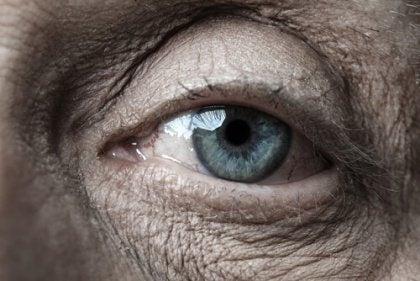 노인의 눈