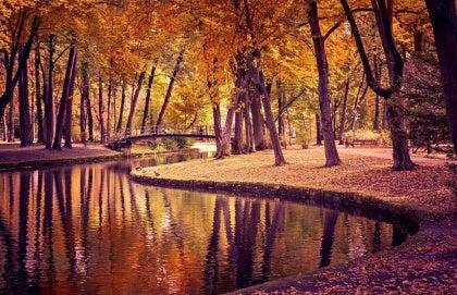 가을 강변