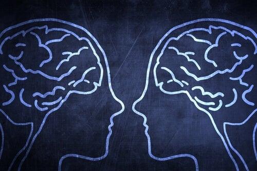 거울 신경세포에 대한 이해