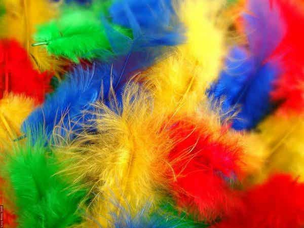 공감각: 소리를 보고, 색깔을 듣고, 물체의 맛을 느끼는 능력