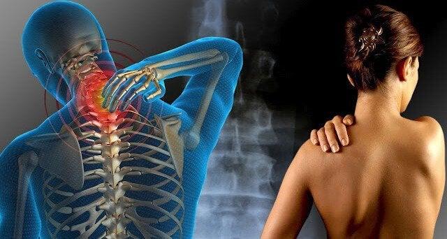 어깨 통증: 뇌 기능을 향상시키는 영양소