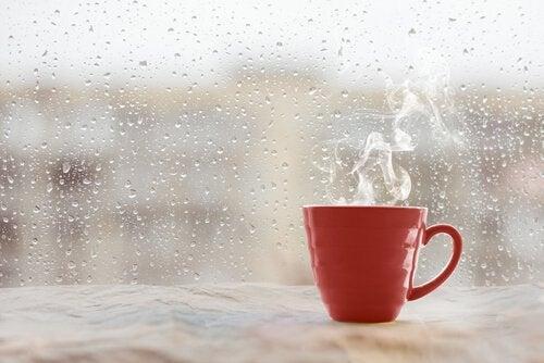 불면증 치유 방법: 커피