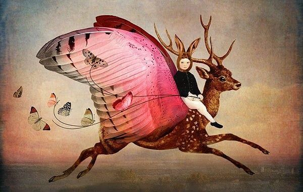 창의성: 사슴과 아이