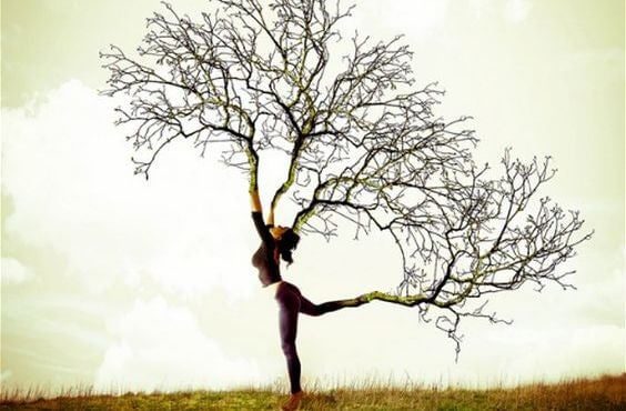 나무가 된 여자: 칭찬은 우리를 끌어 내리려 위협하는 바람과도 같다