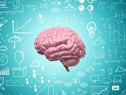 신경가소성 덕분에 우리는 배움을 멈추지 않는다