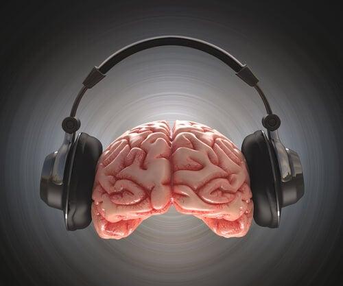 음악 듣는 뇌: 공기 속의 감정