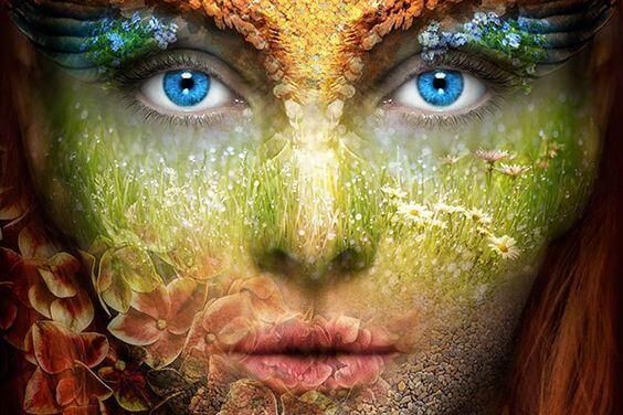 피부가 당신에게 말하는 것: 얼굴