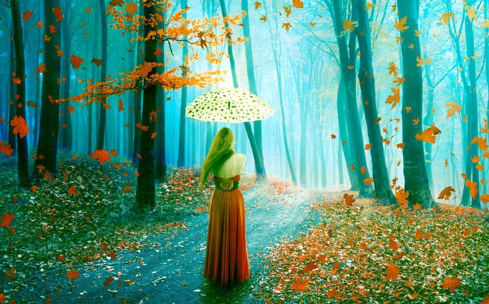 숲 속의 여자
