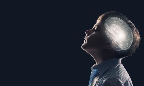사람의 뇌
