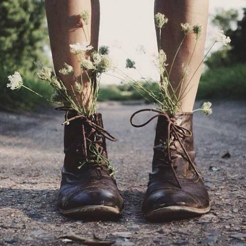 신발 안의 꽃