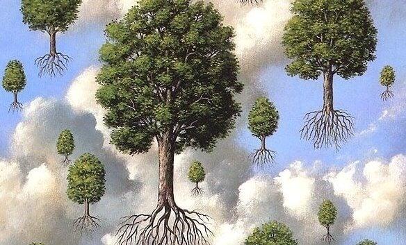 떠다니는 나무