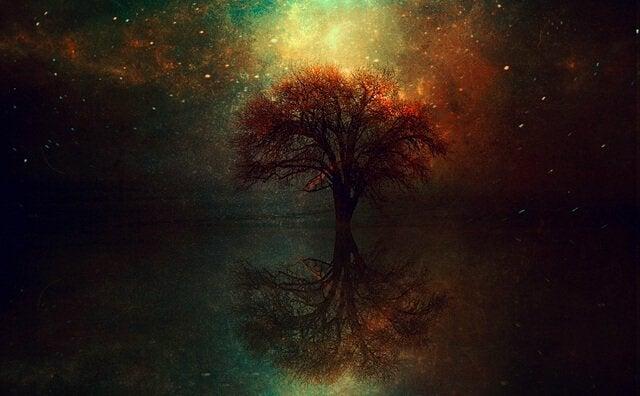 우주와 나무