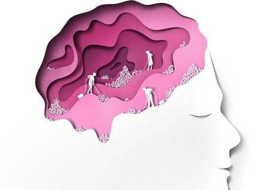 일하는 뇌