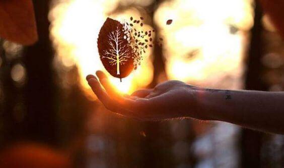 잔혹함에 대한 최고의 반응은 바로 친절함이다