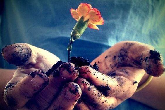 손 안의 흙과 꽃: 잔혹함에 대한 최고의 반응은 바로 친절함이다