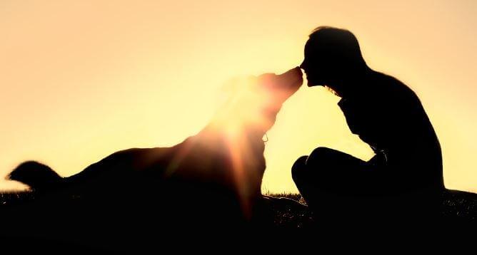 강아지와 키스하는 여자