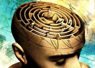 뇌의 미로