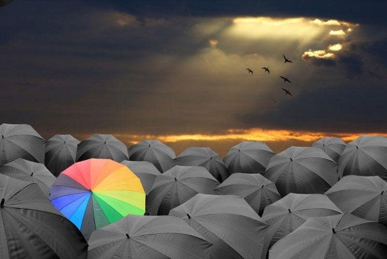 어두운 우산 중 밝은 우산
