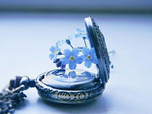 시계 속 꽃