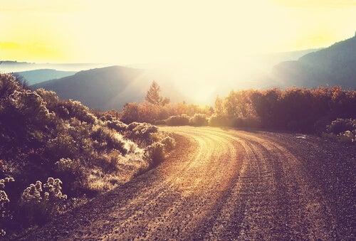 평화로운 길