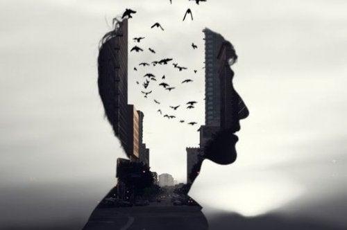 사람 얼굴에 담겨있는 하늘과 새