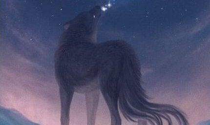 분홍 하늘을 향해 울부짖는 늑대