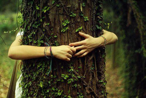 나무를 껴안은 여자