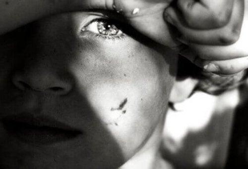아이의 눈