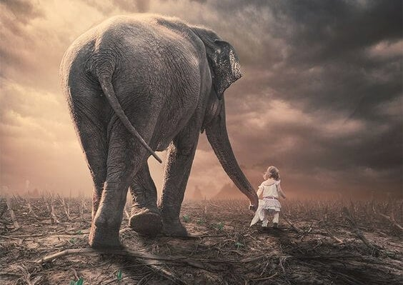 소녀 코끼리
