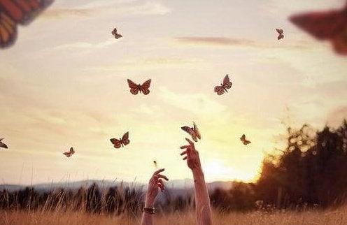 나비를 쫓는 손