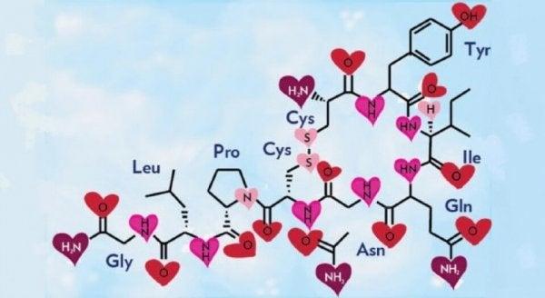 옥시토신: 사랑과 행복의 호르몬