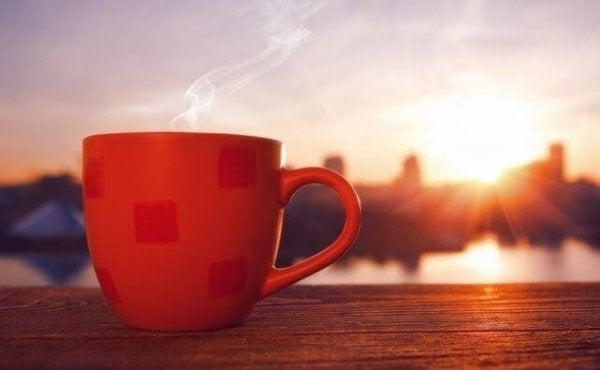 하루를 잘 시작하는 5가지 방법