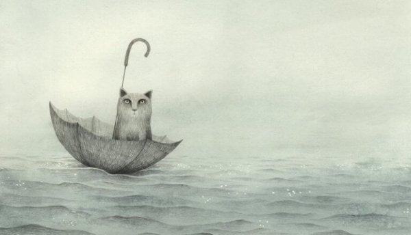 우산 위 고양이