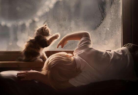 고양이 창문: 좌절을 견디는 법을 아이들에게 가르치기