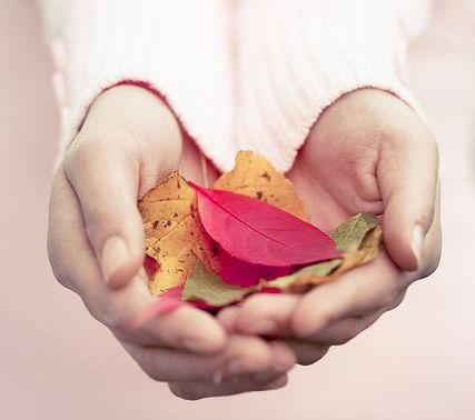 꽃잎을 든 여자의 손
