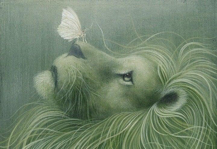 나비와 사자