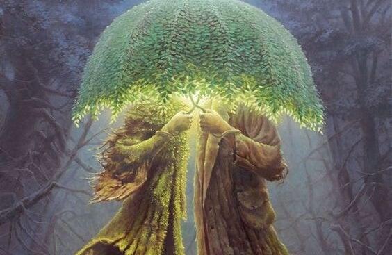 나무 우산