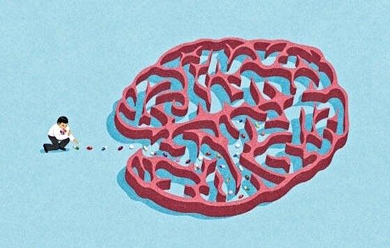 디아제팜 뇌