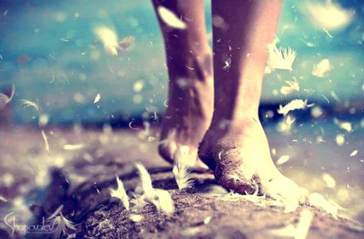 깃털을 밟은 발