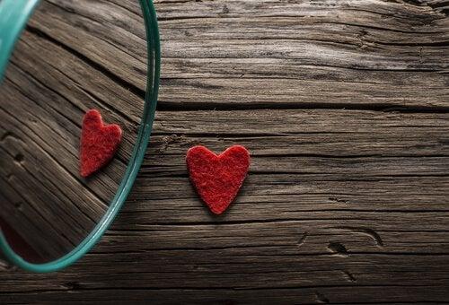 스스로를 사랑하지 않는 사람이 사랑에 빠지는 위험