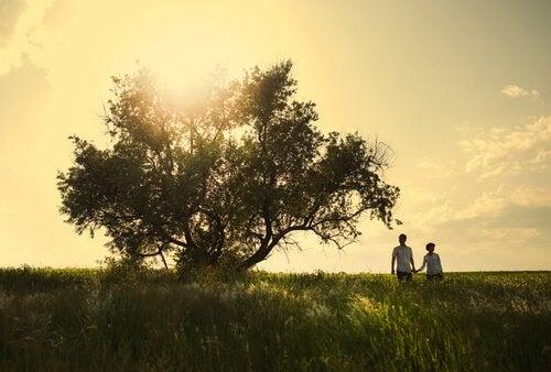 나무 커플