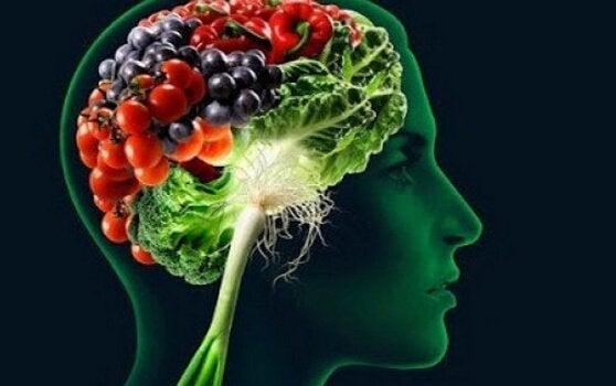 과일과 뇌