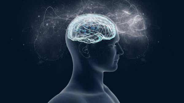 마그네슘: 뇌가 사랑하는 영양소