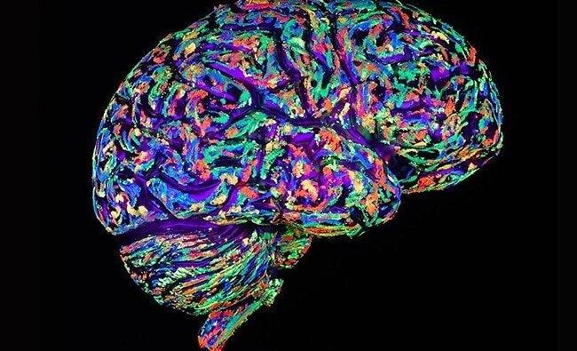 사랑하는 사람이 사라지면 뇌는 어떻게 반응할까?